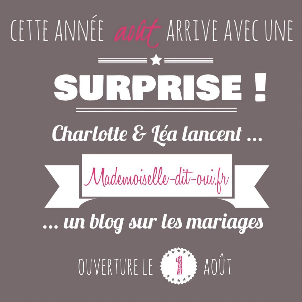 surprise-mademoiselle-dit-oui-lancement-officiel